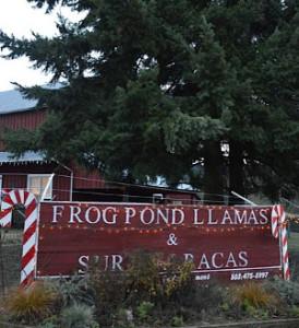 Frog pond farm